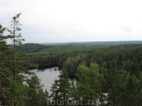 Озеро, а вдали зеленое море деревьев.