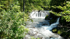 Небольшой водопад в поселке Гузерипль