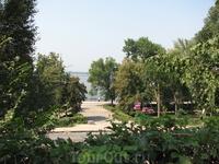 Один из самых старых парков города - Струковский сад, который расположен рядом с Волгой, и часто проводит всевозможные фестивали