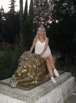 Львы живут напротив коллонады