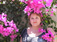 Как же называется это розовая прелесть так и не узнала