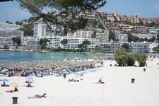 пляж со стороны соснового парка