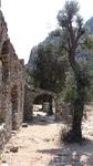 Очень красивое место. Руины античного города находятся на побережье средиземного моря, где в него в падает одна из горных речушек, которая раньше судя ...
