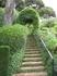 Очень красивые веточки зелени, идущие вдоль ступеней. Кстати, каждый день в сад приезжают садовники и самым тщательным образом ухаживают за всеми растениями ...
