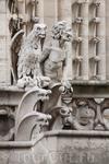 Вид с Notre Dame de Paris