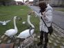 Возле крепостного вала  нас встретили обитатели местного водоёма. За пару булочек птицы согласились позировать перед фотоаппаратом.