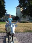 """Морская"" корова возле замка"
