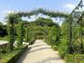 Розарий парка - очень красивое место.