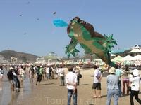 Международный фестиваль воздушных змеев.Крокодил