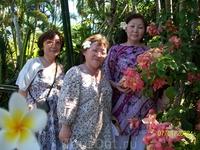 Три сестры под благоухающими цветами в саду орхидей