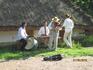 местные музыканты