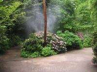 Нимфенбург. Ботанический сад