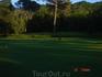 гольф-поле в гольф-клубе
