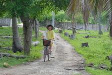 Незаменимый транспорт на Гили Траванган.