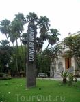 Начало осмотра коллекции растений Ботанического сада